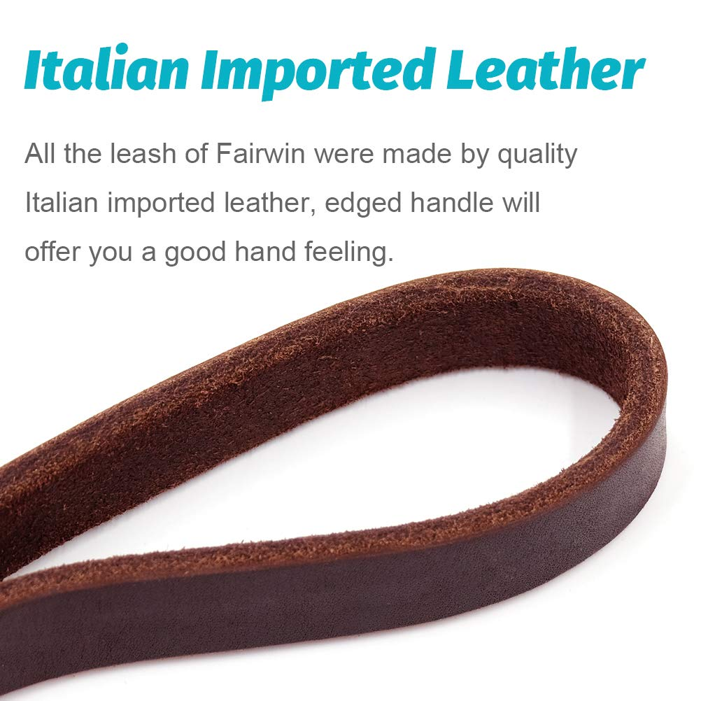 Fairwin Braided Leather Dog Training Leash 6 Foot - Best Dog Leather Leashes Heavy Duty for Large Small Dogs (3/4'' Width, Brown) 004 by Fairwin (Image #4)