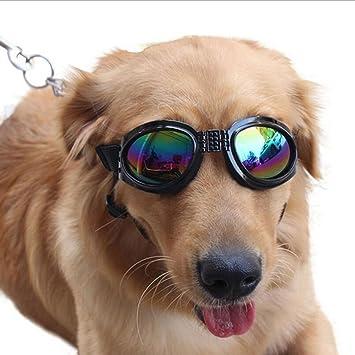 Gafas Para Mascotas Gafas De Sol Para Perros Gafas Para ...
