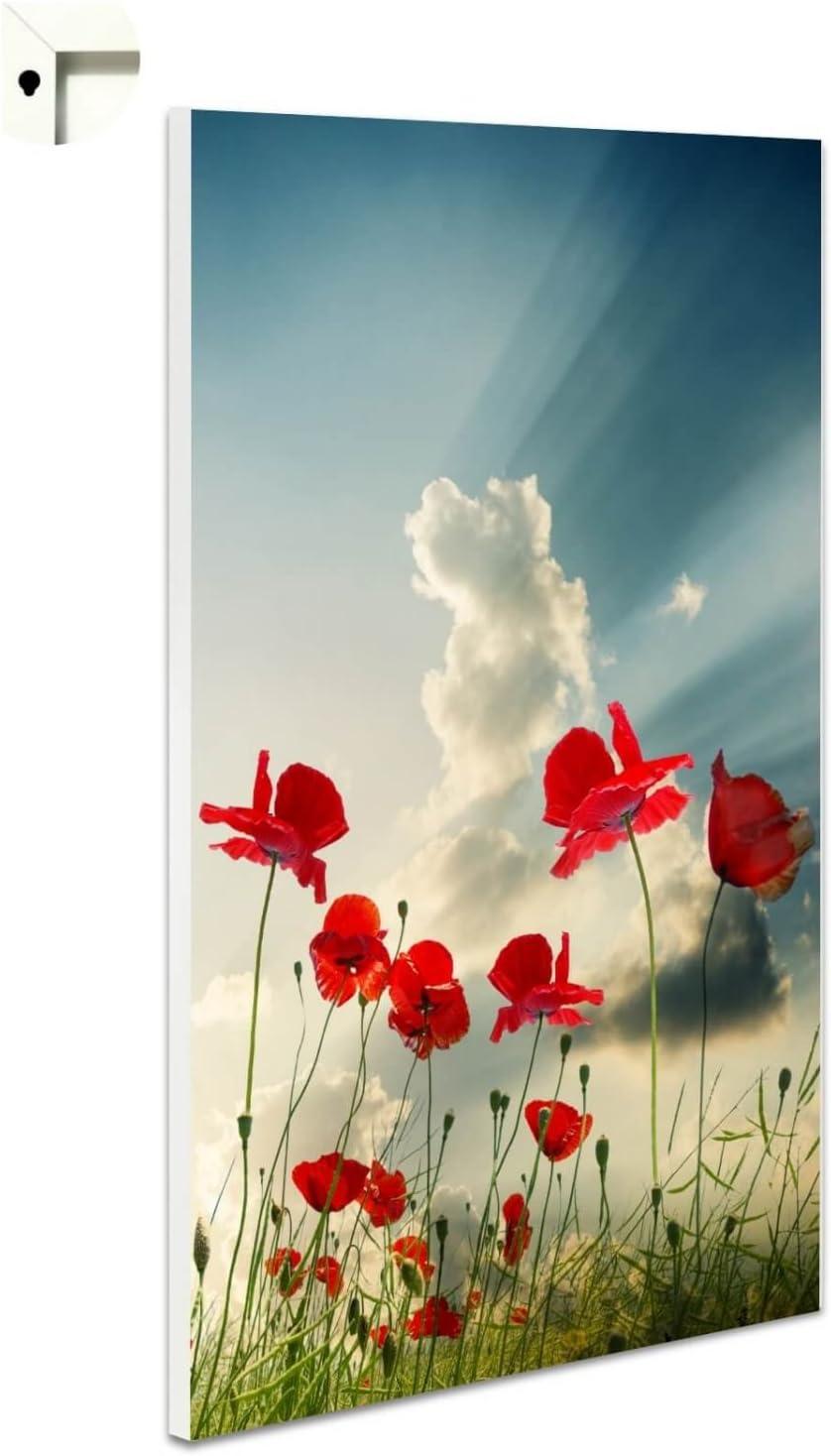Magnettafel Pinnwand mit Motiv Natur Mohnblume Himmel Gr/ö/ße 60 x 80 cm