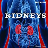 Kidneys, Shannon Caster, 1435893727
