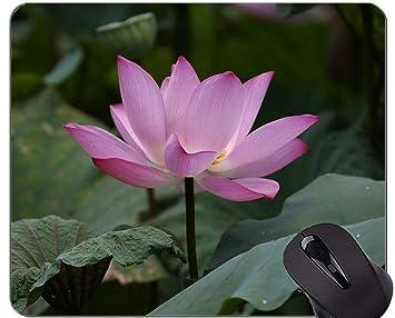 Yanteng Cojín de ratón Floral de la Flor de Loto del Zen ...