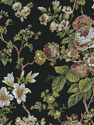 Green Floral Vine Wallpaper - Wallpaper Designer Cottage Floral Red Beige White Green Rose Vine on Black