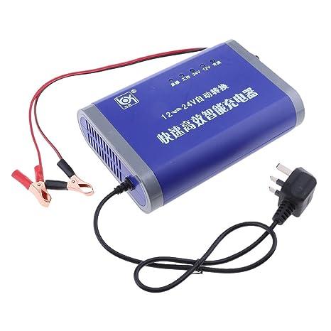 Homyl 12V-24V 10A Cargador de batería Inteligente para Coche ...