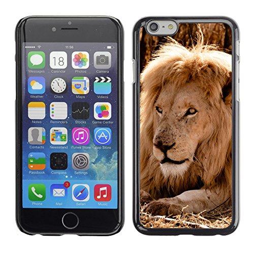 """Premio Sottile Slim Cassa Custodia Case Cover Shell // V00003970 attente de la nourriture // Apple iPhone 6 6S 6G PLUS 5.5"""""""