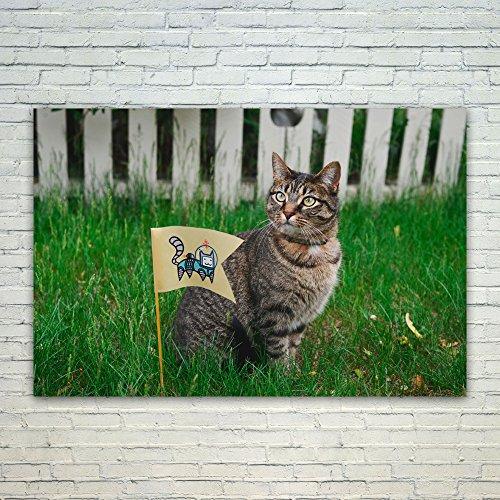 Westlake Art Poster Print Wall Art - Pixie-bob Cat - Modern