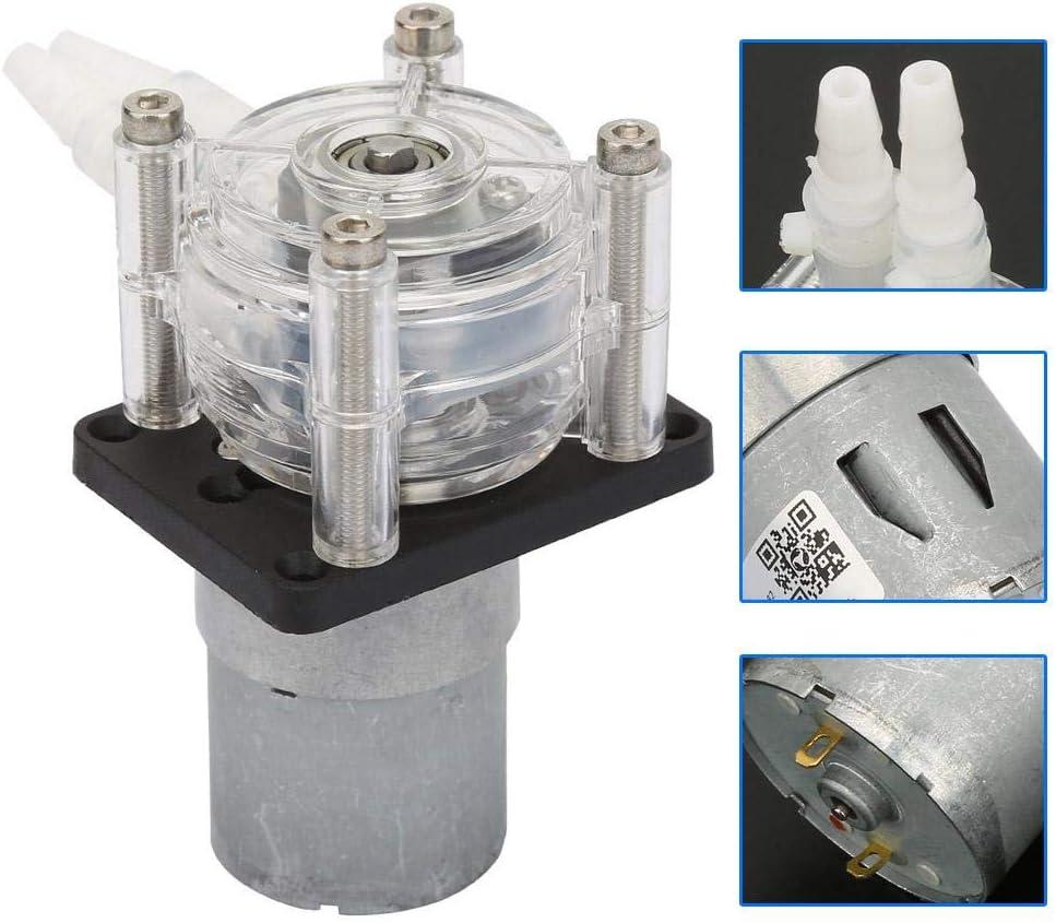 Pangding Bomba dosificadora de autocebado peristáltica de vacío Resistente a la corrosión de Alto Flujo con Motor DC 12V