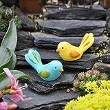 Miniature Fairy Garden Summer Birds, Set of 2, Baby & Kids Zone