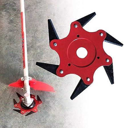 Amazon.com: Aquarius CiCi - 6 cuchillas de acero para ...