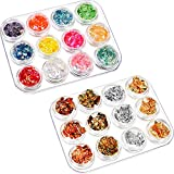 BBTO 24 Pack Nail Paillette Chip Foil Nail Glitter and Ice Mylar Shell Foil Slice Nail Art Design Decoration