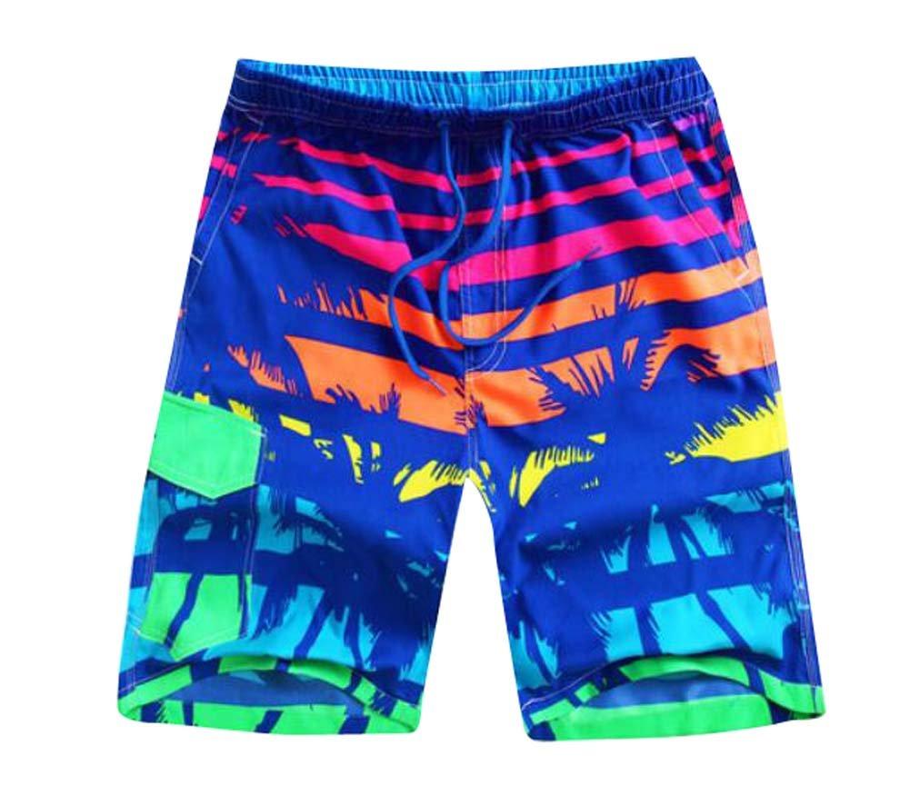 Multicolor Men's Beach Shorts Casual Sport Trunks Quick Dry Shorts Hornet?Park