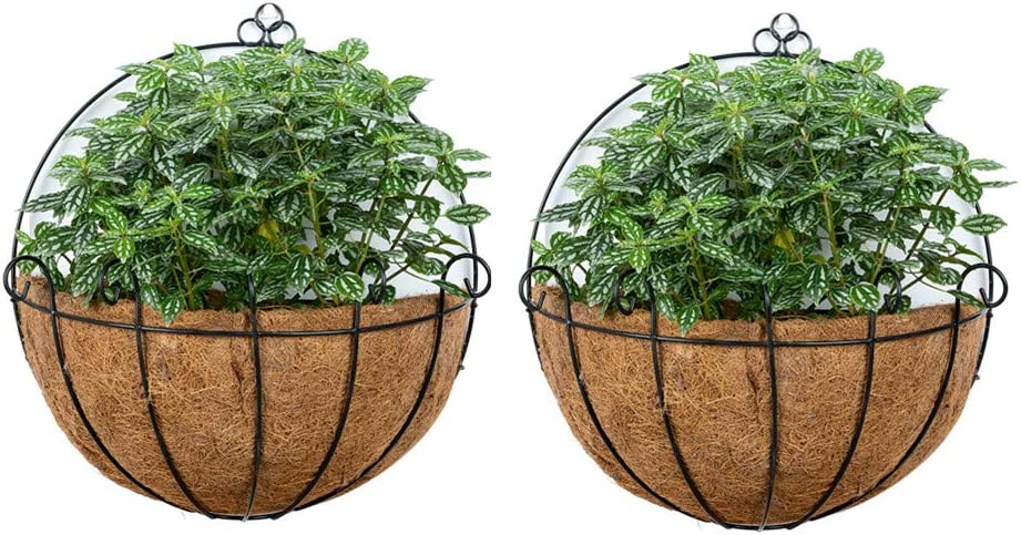 Nuptio 2 Pcs Fence Hanging PlantersMetal Wall PlanterHanging Plant Basket Metal Hanging Planter with Coconut Liners for Planters, Wire Large Hanging Planters for Outdoor Plants for Garden