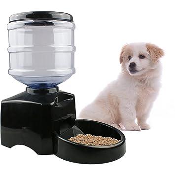 iBaste 5.5L Inteligente Alimentador Automático de Mascotas con Grabación de Mensajes de Voz y Pantalla LCD Grande Dispensador Cuenco de Comida de los Gatos ...