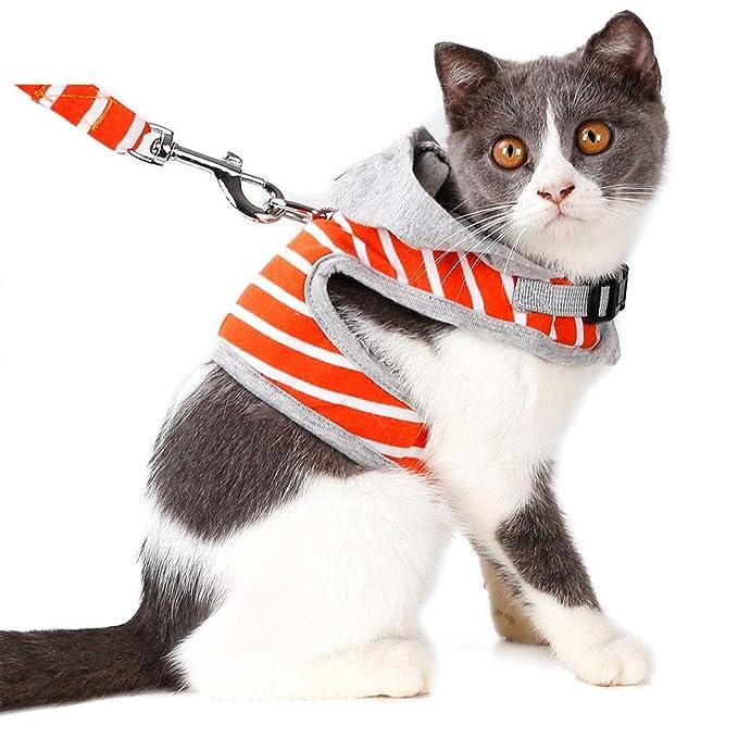 Amazon.com: Pet Cat Leash Rope Chest Strap Cat Vest Type ...