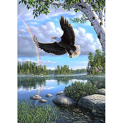 DIY 5D Diamond Painting by Number Kits, Crystal Rhinestone Diamond Embroidery Paintings Pictures Arts Craft for Home Wall Decor, Flying Eagle - Flying Eagle Embroidery
