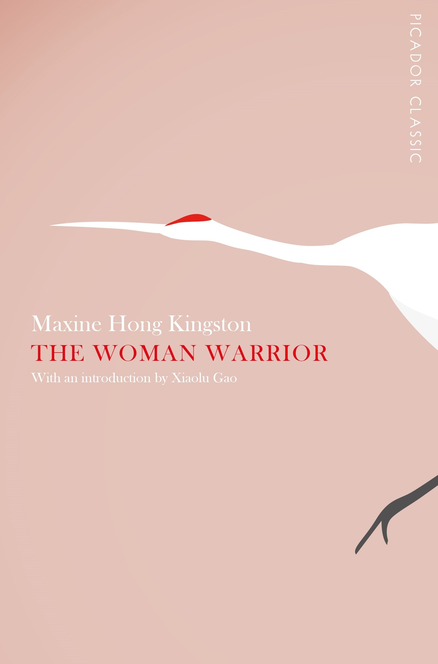The Woman Warrior (Picador Classic) ebook