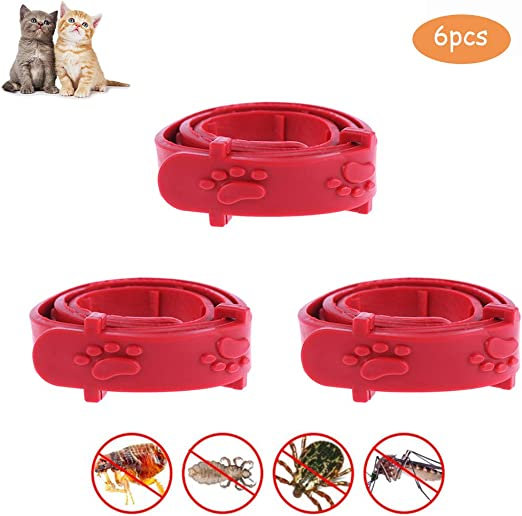Kikier Collar antipulgas para Gato, 3 Piezas, Rojo, Ajustable, para Mascotas, Gatos, Gatos, antipulgas, garrapatas, Gatos, Suministros de protección para Gatos, Gatitos, Cachorros: Amazon.es: Productos para mascotas