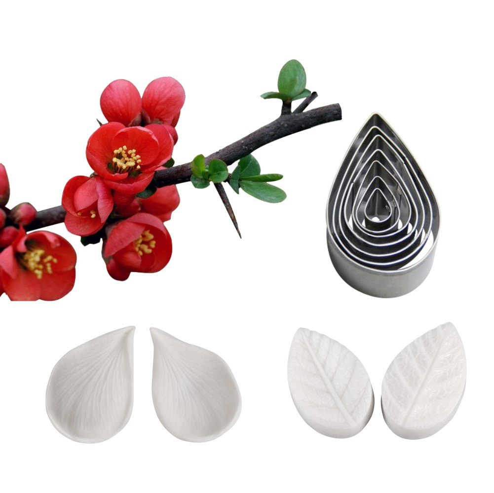 AK ART KITCHENWARE Sugar Paste Flower Veining Molds Petal Veiners Leaf Cutter Fontant Mold Cake Craft Tools (Plumeria)