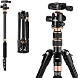 "TYCKA 55"" Ultra Compact and Lightweight Aluminum Tripod with 360° Panorama Ball head, ideal for travel and work (Renewed)"
