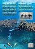 Scuba Diving Malta Gozo Comino
