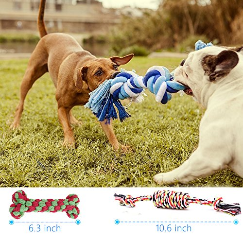 Hhusali Dog Toys 5 Pack Gift Set, Ball Rope and Chew Toys for Medium to Small Doggie