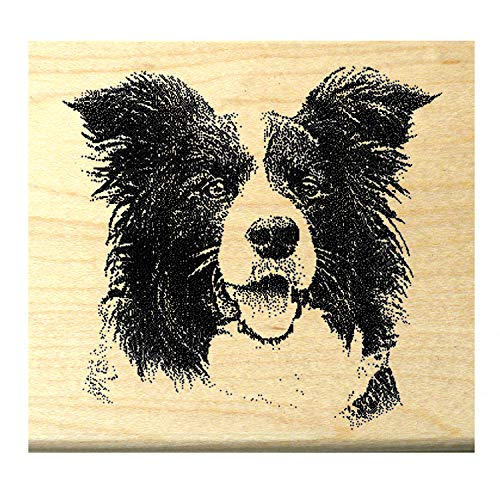 Border Stamp Rubber - P4 Border Collie Dog Rubber Stamp