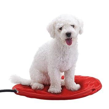UBEI - Alfombrilla de Calefacción para Mascotas, Redonda, para Gatos, 12 V, Calefacción Eléctrica, Cama para Cachorro, 30 cm, Color Rojo: Amazon.es: ...