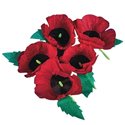 S&S Worldwide Remembrance Poppies Craft Kit (makes 50): Toys & Games