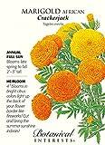 Crackerjack African Marigold Seeds - 750 mg