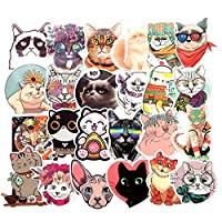 Homyu Stickers Decals for Laptops Cars Motorcycle Portable Luggages Ipad Waterproof Sunlight-Proof