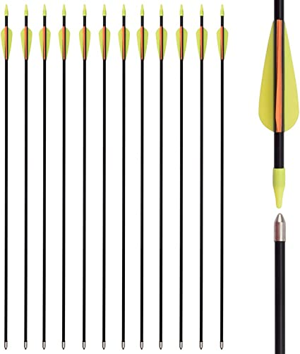 Practice Arrows or Youth Arrows for Recurve Bow for Children,Woman or Beginners. TOPARCHERY 12 pcs Fiberglass Archery Target Arrows