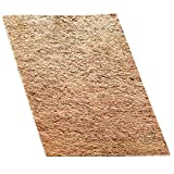 SunGrow Coco Fiber Mat for Pets, 10-inches by 13-inches, Paw-Friendly Reptile Bed, Climbing Carpet, Strong and Soft Fiber, Terrarium Liner for Snakes, Chameleons, Geckos