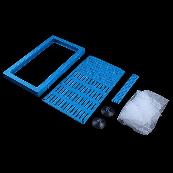 Amazon.com : eDealMax plástico peces de acuario tanque Marco Fry ...