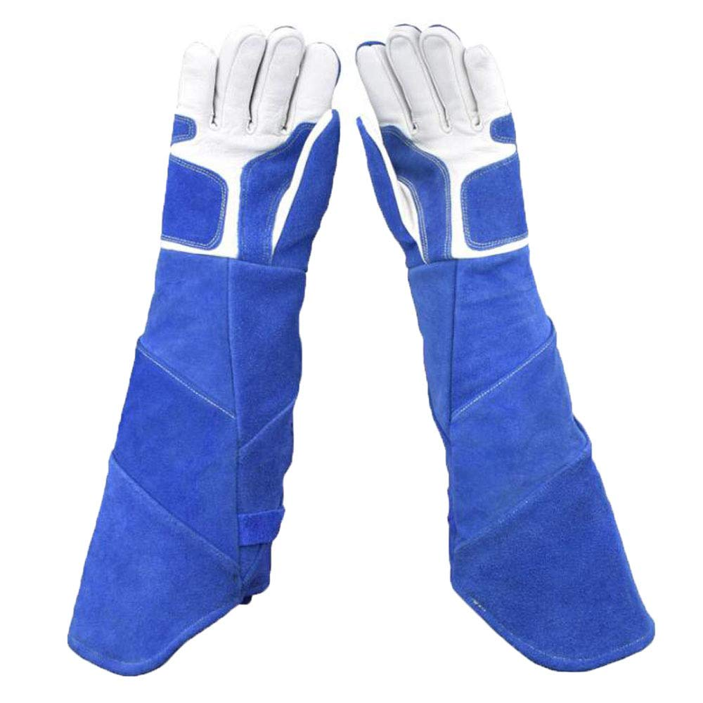 ANHPI,Anti-Animal Catching Gloves, Long Thickening Dog, Pet Snake Pet, Protective Gloves,Blue-L