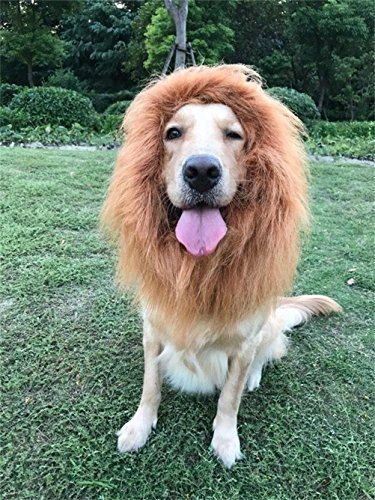 Dog Lion Mane Wig Costume Adjustable Washable Comfortable Fancy Dress for Halloween Christmas Easter Festival Party Activity (brown, (Simba Costume For Dog)