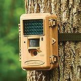 The High Definition Birding Camera
