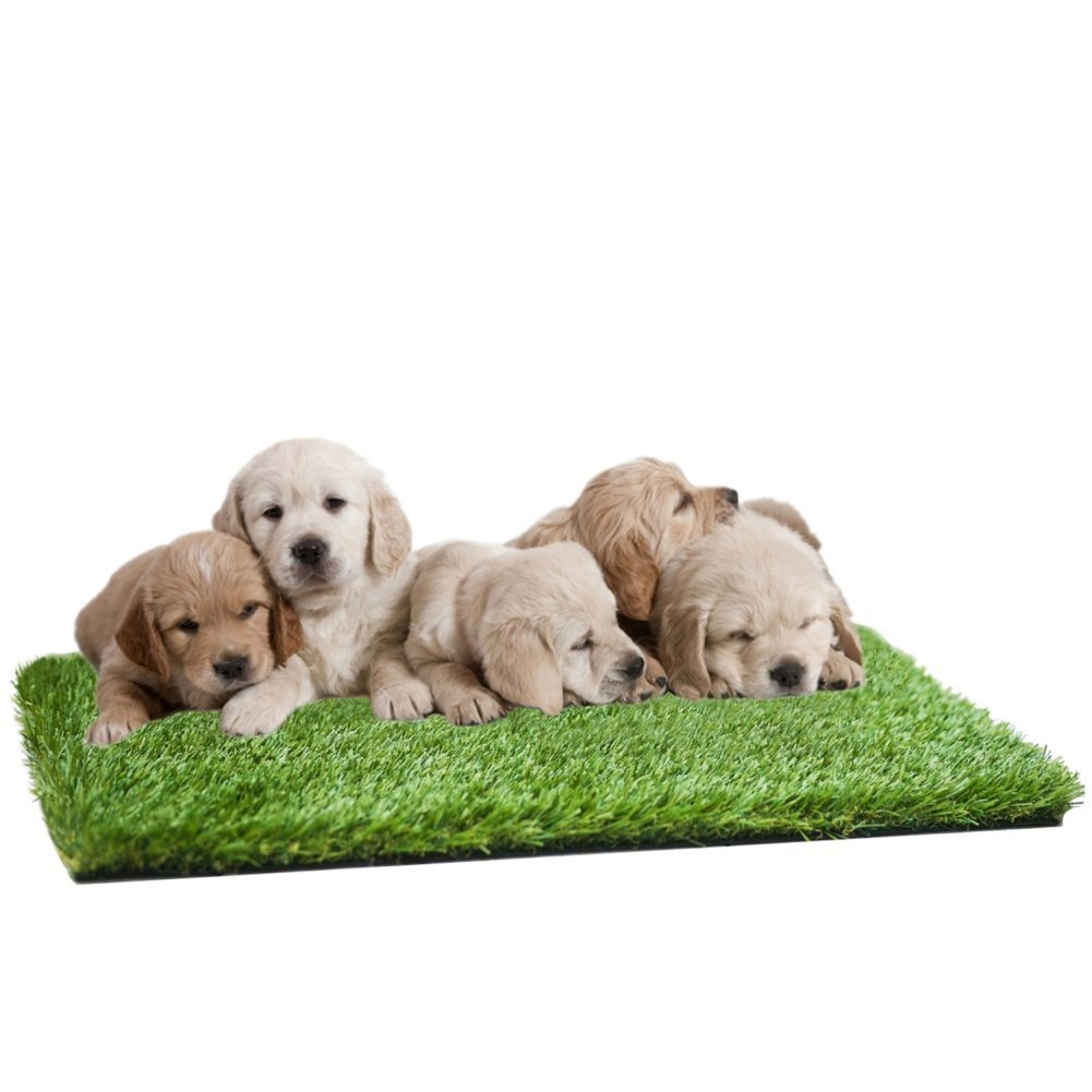 MTBRO Artificial Grass Mat for Puppies & Small Pets, Perfect for Potty Training and Outdoor Replacement Grass Mat, Premium Grass Doormat for Pets Clean Paws, Blade Height 1.5'', 100oz/sq.Yard, 24''x16''