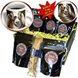 Susans Zoo Crew Animals Farm Goat - Nubian Dairy Goat Doe White Stripe Caprine sq - Coffee Gift Baskets - Coffee Gift Basket (cgb_156065_1)