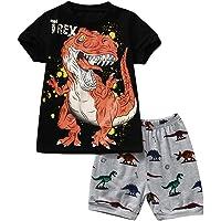 1-7 Años,SO-buts Niño Niño Niño Pequeño Traje De Verano De Dibujos Animados Camiseta Con Estampado De Dinosaurio Tops Y…