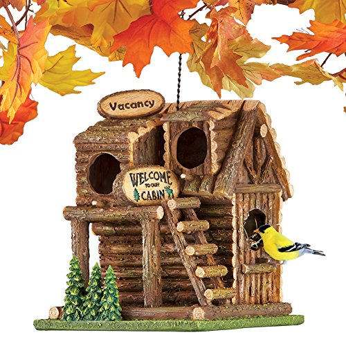 - Collections Etc Hanging Northwoods Log Cabin Birdhouse with Chain and Hook - Hand Painted Birdhouse with Three Bird Entry Holes and Back Access Door for Easy Cleaning