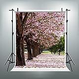 Maijoeyy 5x7ft Photography Backdrops Pink Petals Photo Studio Backdrop Photography Props S-1367