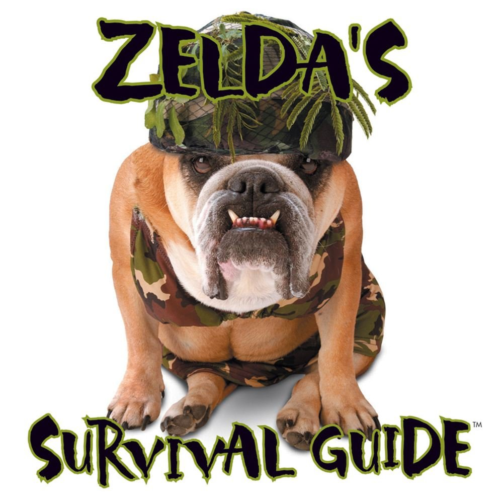 Zelda's Survival Guide pdf epub