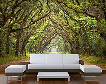 Captivating Startonight Mural Wall Art Photo Decor Trees Tunnel Large 8 Feet 4 Inch By Part 16