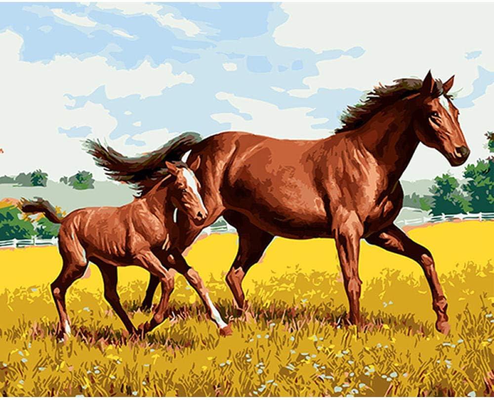 Diy pintura digital pintura acrílica principiante niños adultos pintados a mano regalo de navidad dos caballos marrones con marco 40x50cm