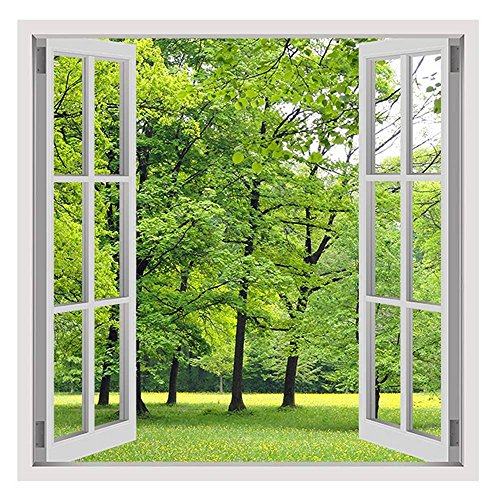 Faux Painting Murals (Alonline Art - Green Nature Fake 3D Window PRINT On CANVAS (Synthetic, UNFRAMED Unmounted) 16