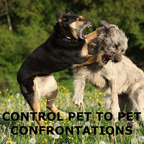 Can Animal Control Take Your Dog For Barking