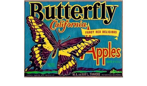 Watsonville California Butterfly Apple Fruit Crate Label Vintage Art Print