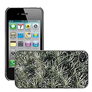 Print Motif Coque de protection Case Cover // M00153898 Bush Cerrar Star Fund Fondo // Apple iPhone 4 4S 4G