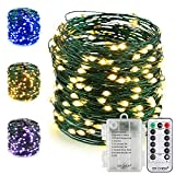 ER CHEN Fairy Lights with Remote, Battery Operated Green Copper Wire 66Ft 200 LED String Lights Color Changing 8 Modes Christmas Lights with Timer for Bedroom, Patio, Garden, Yard (Warm White&Blue)