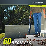 Greenworks Pro 80V Cordless Brushless Axial