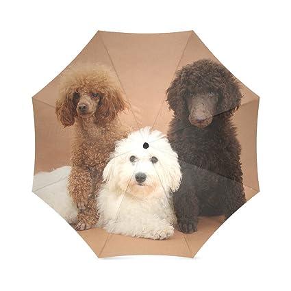Diseño Coold marca nuevo paraguas lluvia – Figura perro impreso Auto plegable paraguas para primavera/